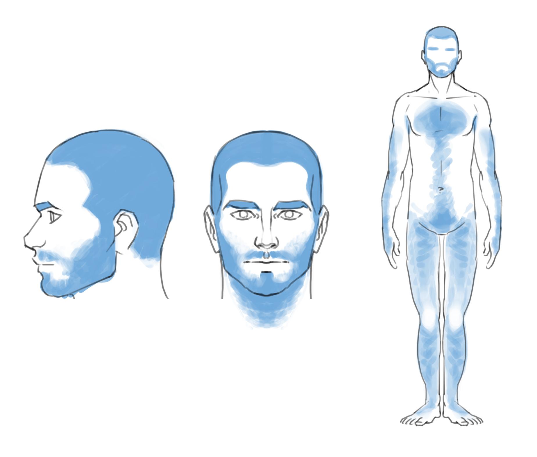 Les Forges Elements D Anatomie